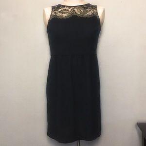 LOFT Petites Gold Lace Black Dress 4